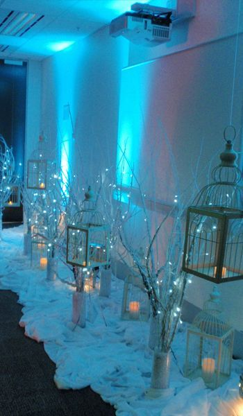 Bird Cages & Fairy Lights