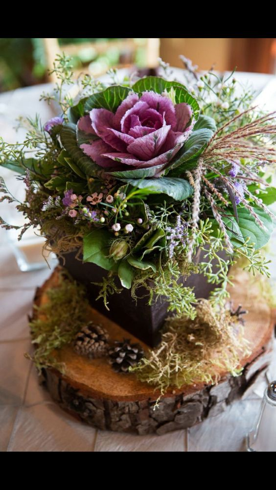 Succulent and Raw Wood Centerpiece